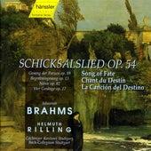 J. Brahms: Schicksalslied / Song of Fate by Gachinger Kantorei Stuttgart