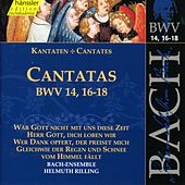Play & Download Bach: Cantatas BWV 14, 16-18 by Bach-Collegium Stuttgart | Napster