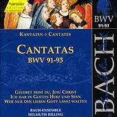 Play & Download J.S. Bach - Cantatas BWV 91-93 by Bach-Collegium Stuttgart | Napster