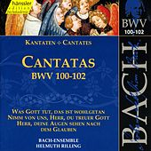Play & Download J.S. Bach - Cantatas BWV 100-102 by Bach-Collegium Stuttgart | Napster
