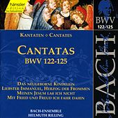 Play & Download J.S. Bach - Cantatas BWV 122-125 by Bach-Collegium Stuttgart | Napster
