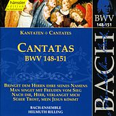 Play & Download J.S. Bach - Cantatas BWV - 148-151 by Bach-Collegium Stuttgart | Napster