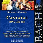 Play & Download J.S. Bach - Cantatas BWV 152-155 by Bach-Collegium Stuttgart | Napster