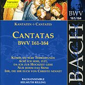 Play & Download J.S. Bach - Cantatas BWV 161-164 by Bach-Collegium Stuttgart | Napster