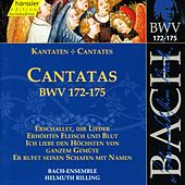 Play & Download J.S. Bach - Cantatas BWV 172-175 by Bach-Collegium Stuttgart | Napster