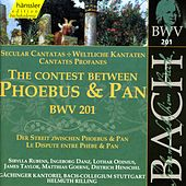 Play & Download J.S. Bach - The Contest Between Phoebus & Pan BWV 201 by Bach-Collegium Stuttgart | Napster