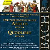 Play & Download J.S. Bach - Secular Cantata BWV 205 / Quodlibet BWV 524 by Bach-Collegium Stuttgart | Napster