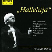 Halleluja by Various Artists