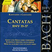 Play & Download J.S. Bach - Cantatas BWV 35-37 by Bach-Collegium Stuttgart | Napster