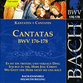 Play & Download J.S. Bach - Cantatas BWV 176-178 by Bach-Collegium Stuttgart | Napster
