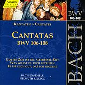 Play & Download J.S. Bach - Cantatas BWV 106-108 by Bach-Collegium Stuttgart | Napster