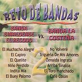 Play & Download Reto de Bandas by Various Artists | Napster
