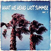 What We Heard Last Summer, Vol. 1 (Best Of Chill Out & Lounge Music) by Various Artists