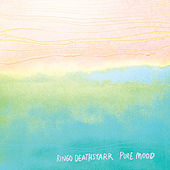 Play & Download Pure Mood by Ringo Deathstarr | Napster