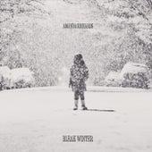 Play & Download Bleak Winter by Amanda Richards | Napster