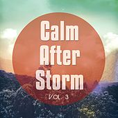 Calm After Storm, Vol. 3 (After Stressful Day Relax) by Various Artists