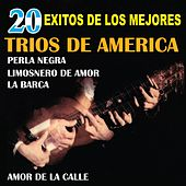 Play & Download 20 Exitos de los Mejores Trios de America by Various Artists | Napster