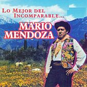 Lo Mejor del Incomparable...Mario Mendoza by Mario Mendoza