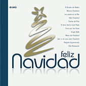 Play & Download Navidad by Various Artists | Napster