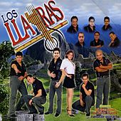 Play & Download Mi Gran Amor by Los Llayras | Napster