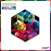 Selective: House by Various Artists