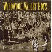Play & Download I'm A Believer by Wildwood Valley Boys | Napster