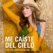 Play & Download Me Caíste del Cielo by Los Relampagos Del Norte | Napster