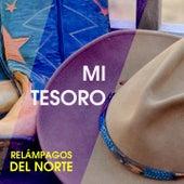 Play & Download Mi Tesoro by Los Relampagos Del Norte | Napster
