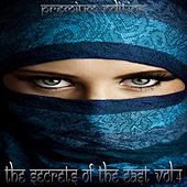 Secrets of The East, Vol.4 (Premium Edition) by Various Artists