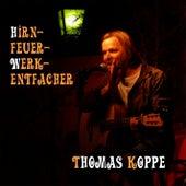 Hirnfeuerwerkentfacher von Thomas Koppe