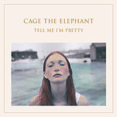Play & Download Too Late To Say Goodbye by Cage The Elephant | Napster