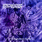 Play & Download Lost in the Beauty You Slay by Sacrilege | Napster