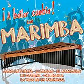 ¡A Bailar Cumbia! con Marimba by Various Artists