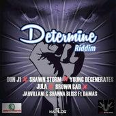 Determine Riddim by Various Artists