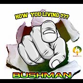 How You Living by Bushman