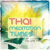 Play & Download Thai Meditation Tunes - Vipassana Session, Vol. 2 (Finest Of Relaxation & Wellness Chill Out Music) by Various Artists | Napster