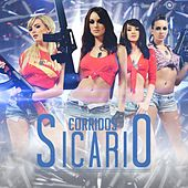 Play & Download Corridos Sicario by Various Artists | Napster