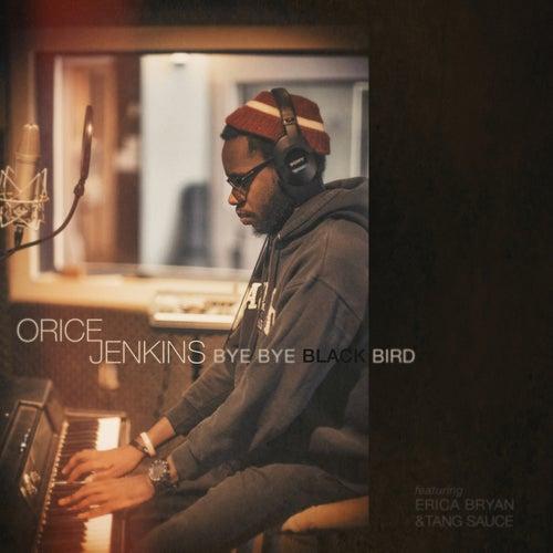 Bye Bye Blackbird (feat. Erica Bryan & Tang Sauce) - Single by Orice Jenkins