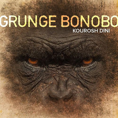 Play & Download Grunge Bonobo by Kourosh Dini | Napster