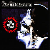 So Into You by The Wildhearts