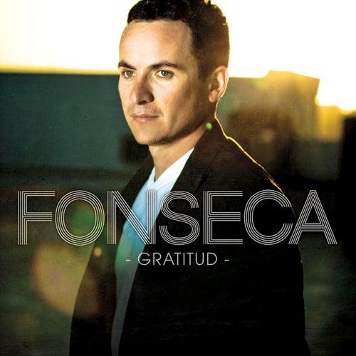 Gratitud by Fonseca