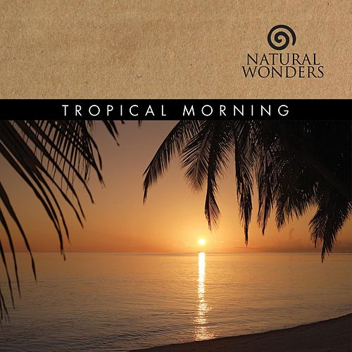 Tropical Morning by David Arkenstone
