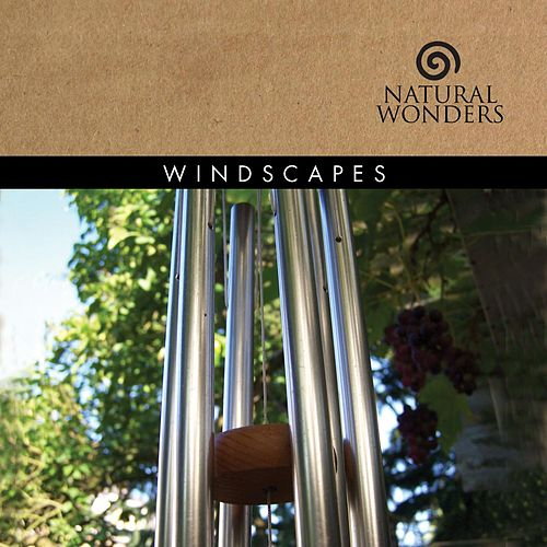 Windscapes by David Arkenstone