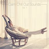 Play & Download Calm Chill out Sounds, Vol. 1 by Various Artists | Napster