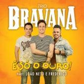 Play & Download É Só o Ouro by Trio Bravana | Napster