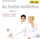 Mahler: Des Knaben Wunderhorn by Various Artists