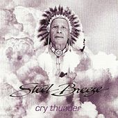 Cry Thunder by Steel Breeze