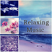 Relaxing Music - Music for Lunch Time, Cocktail Party, Garden Party, Birthday Party, Family Time, Piano Bar Music, Dinner Party by Relaxing Piano Music Guys