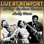Play & Download Live At Newport by Various Artists | Napster