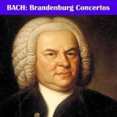 Play & Download Bach: Brandenburg Concertos by Philharmonia Slavonica | Napster